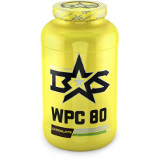 WPC 80 WHEY PROTEIN 1300 gr